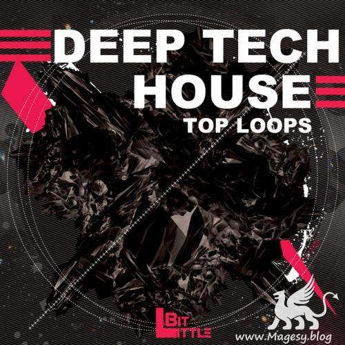 Deep Tech House Top Loops WAV | Images From Magesy® R Evolution™