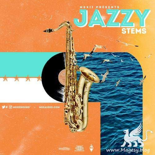 The Jazzy Stems Vol.1 WAV