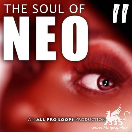 The Soul Of Neo 2 WAV MiDi-MAGNETRiXX