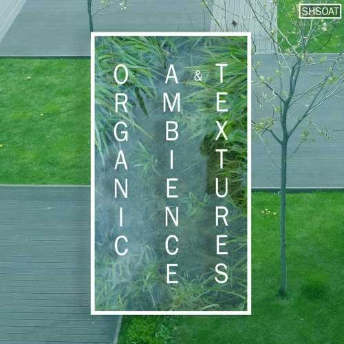Organic Ambience and Textures WAV