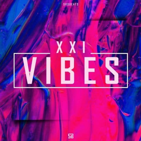 XXI Vibes Vol.1 MULTiFORMAT | Images From Magesy® R Evolution™