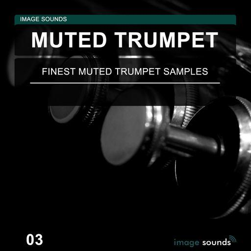 Muted Trumpet 03 WAV   Images From Magesy® R Evolution™