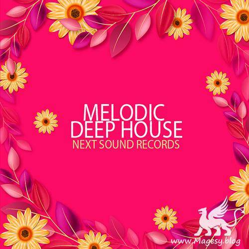 Melodic Deep House MULTiFORMAT