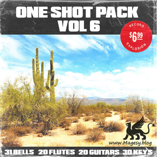 100+ One Shot Pack Vol.6 WAV