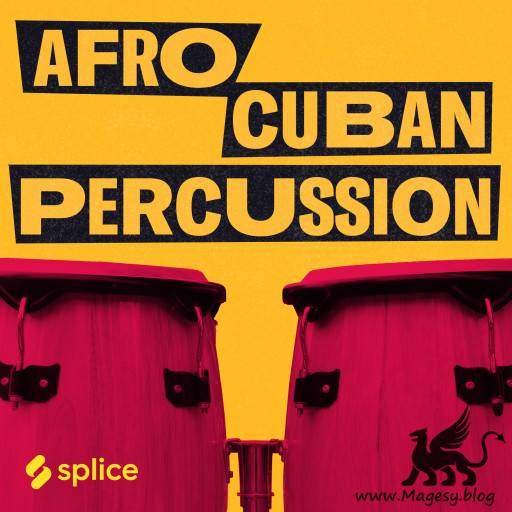 Afro Cuban Percussion WAV-DECiBEL