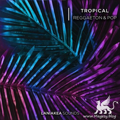 Tropical Reggaeton And Pop WAV-DiSCOVER