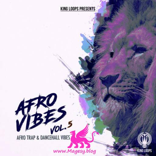 Afro Vibes Vol.5 WAV MiDi-DiSCOVER
