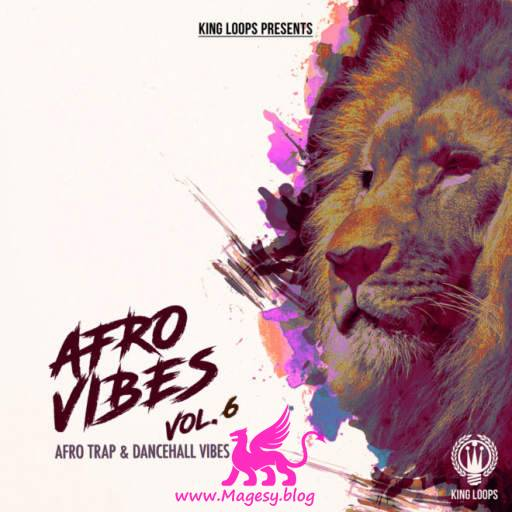Afro Vibes Vol.6 WAV MiDi-DiSCOVER