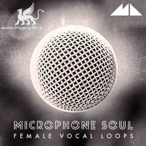 Microphone Soul WAV-DiSCOVER