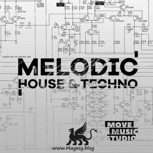 Melodic House and Techno WAV