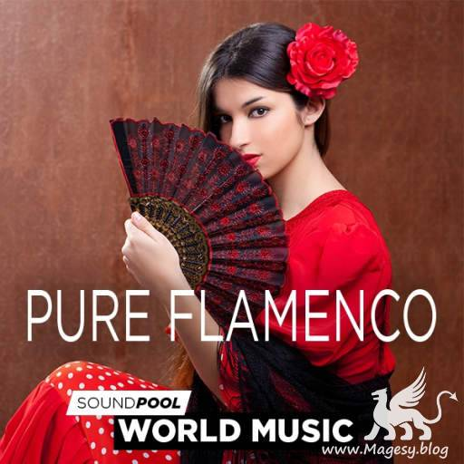 Pure Flamenco WAV