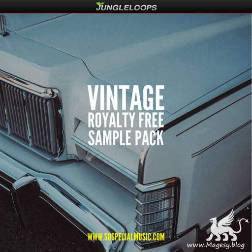 Vintage Sample Pack WAV-DiSCOVER