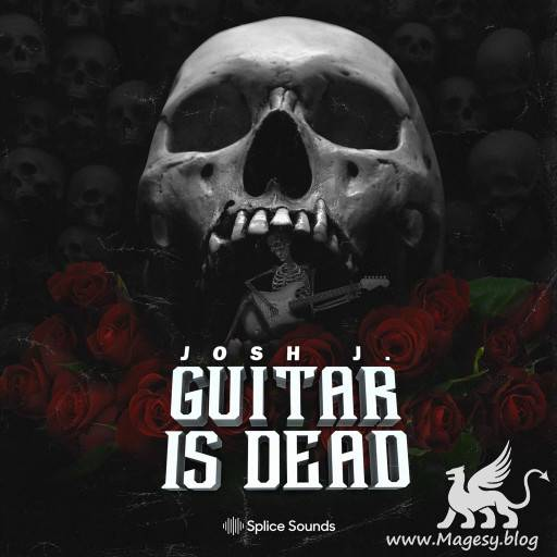 Guitar is Dead Sample Pack WAV-FLARE