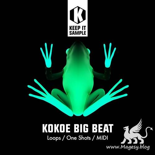 Kokoe Big Beat WAV MiDi