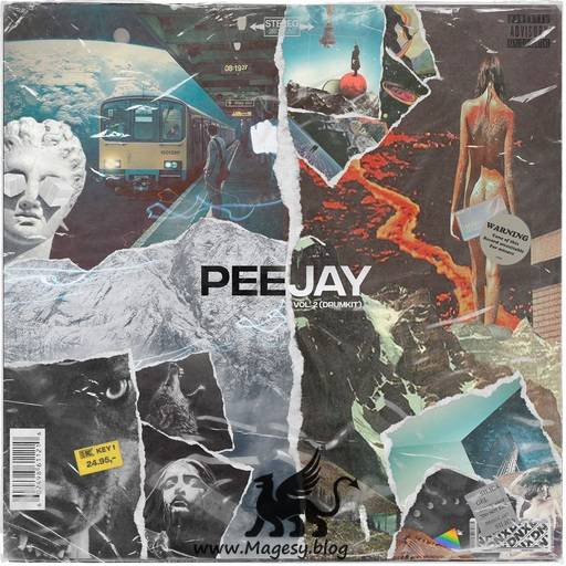 PeeJay Vol.2 Drum Kit WAV