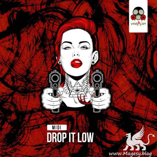 Drop It Low MiDi-DiSCOVER