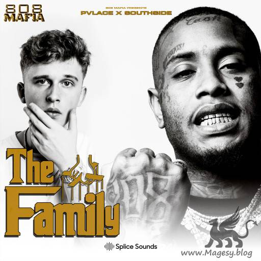 The Family Sample Pack WAV-FLARE