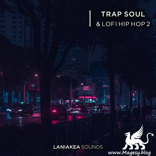 Trap Soul And Lo-Fi Hip Hop 2