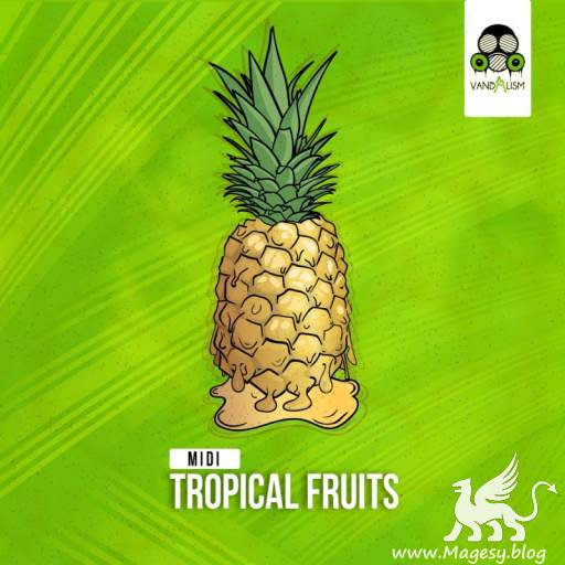Tropical Fruits MiDi-DiSCOVER