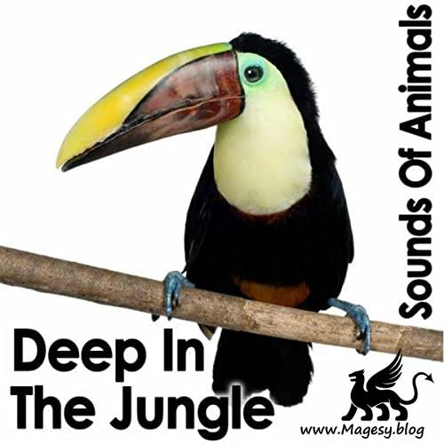 Deep in the Jungle EFFECTS