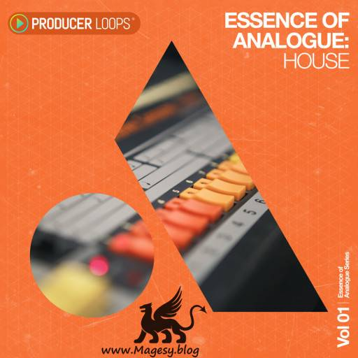 Essence of Analogue Vol.1 House WAV