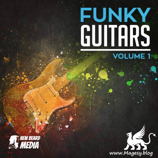 Funky Guitars Vol.1 WAV