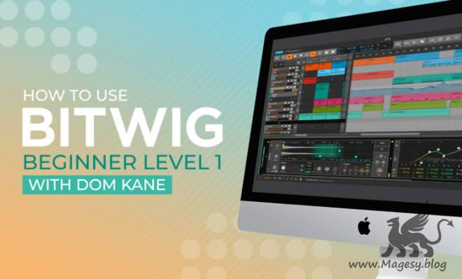 How To Use Bitwig Beginner Level 1 TUTORiAL