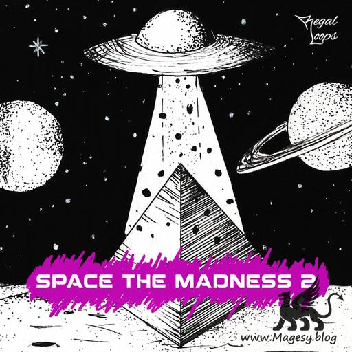 Space The Madness 2 WAV-FLARE