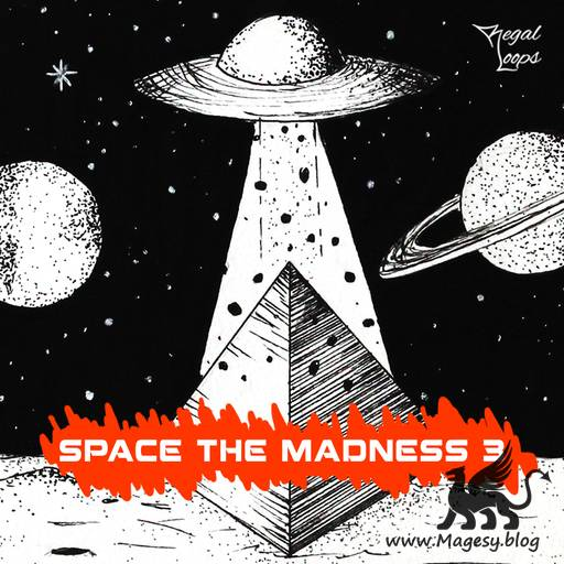 Space The Madness 3 WAV-FLARE