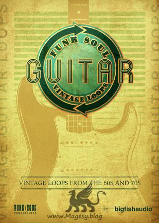 Vintage Guitar Loops MULTiFORMAT
