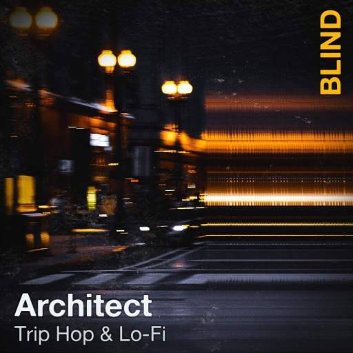Architect: Trip Hop And Lo-Fi SAMPLES WAV