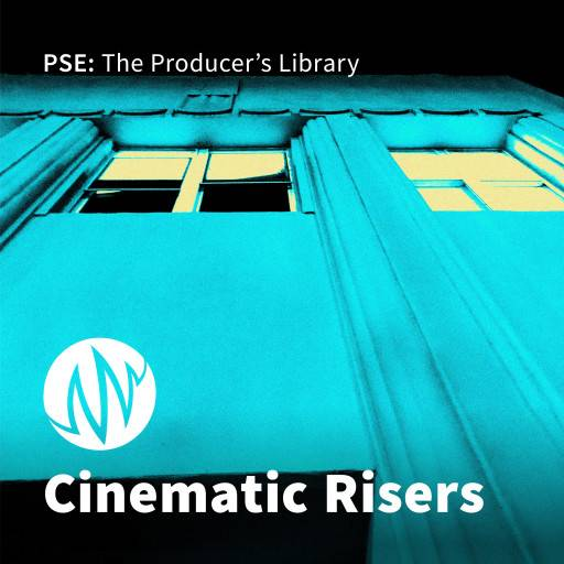 Cinematic Risers FX SAMPLES WAV