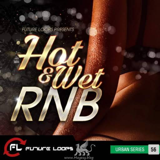 Hot and Wet RNB SAMPLES WAV-DECiBEL