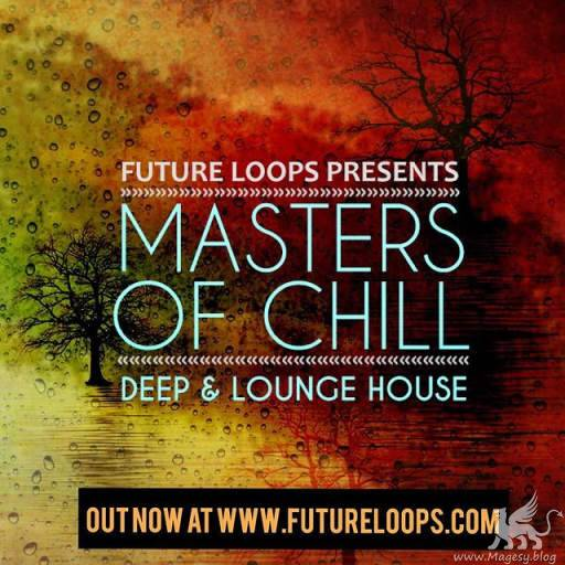 Masters Of Chill SAMPLES WAV-DECiBEL