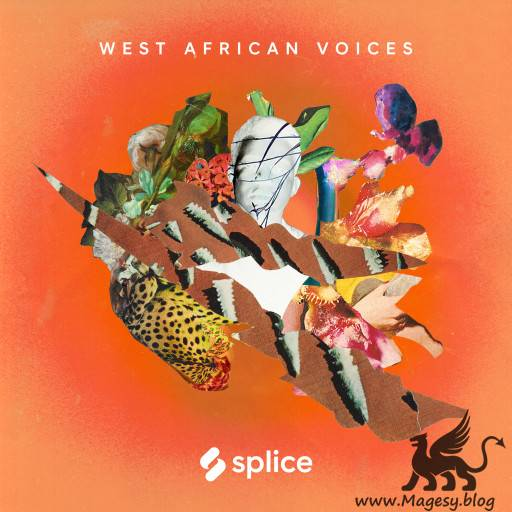West African Voices WAV-FLARE