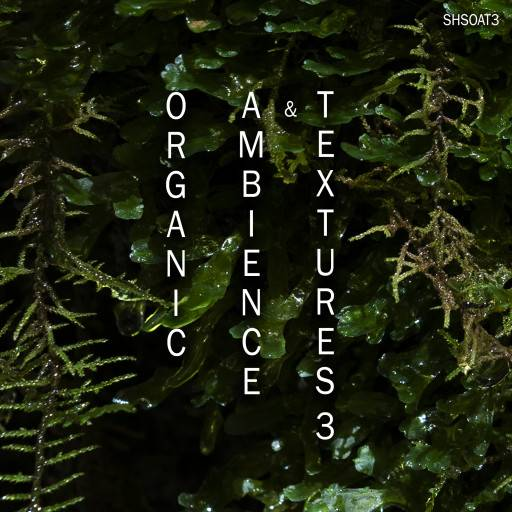 Organic Ambience And Textures 3 WAV