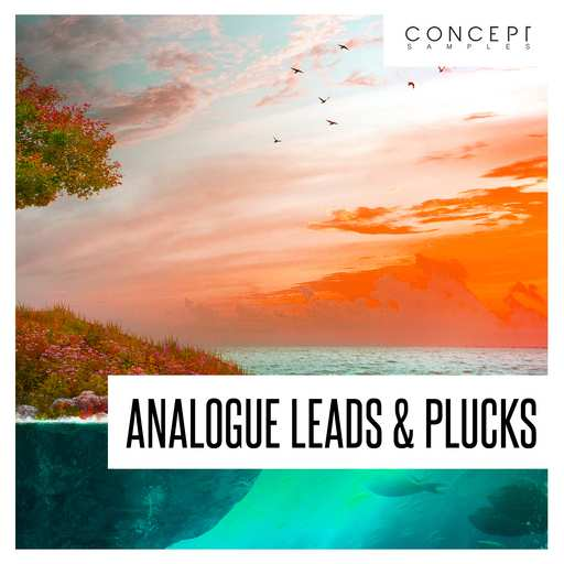 Analogue Leads And Plucks WAV-DECiBEL