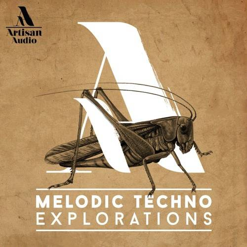 Melodic Techno Explorations MULTiFORMAT
