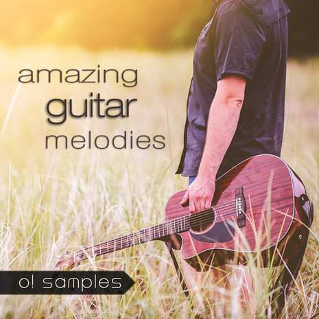 Amazing Guitar Melodies WAV MiDi-TZ Group