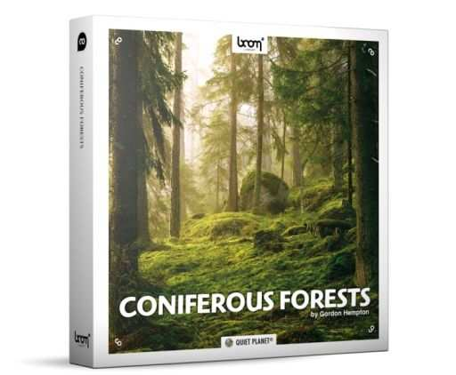 Coniferous Forests SFX WAV