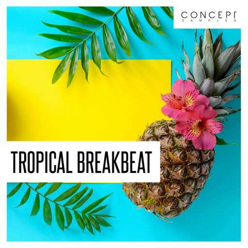 Tropical Breakbeat WAV-DECiBEL