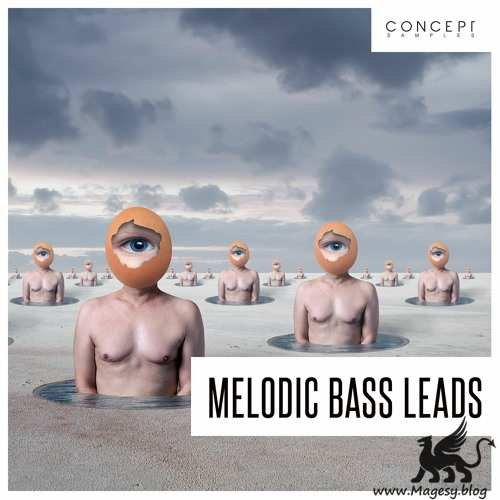 Melodic Bass Leads WAV-DECiBEL