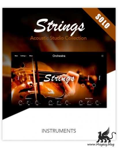 Muze Strings Solo KONTAKT