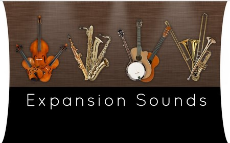 Notion v4.0.325 Expansion Sounds Add-On WiN ISO-RBS