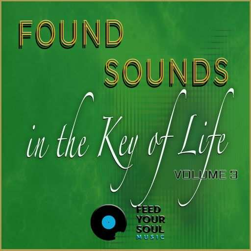 Sounds in The Key of Life WAV
