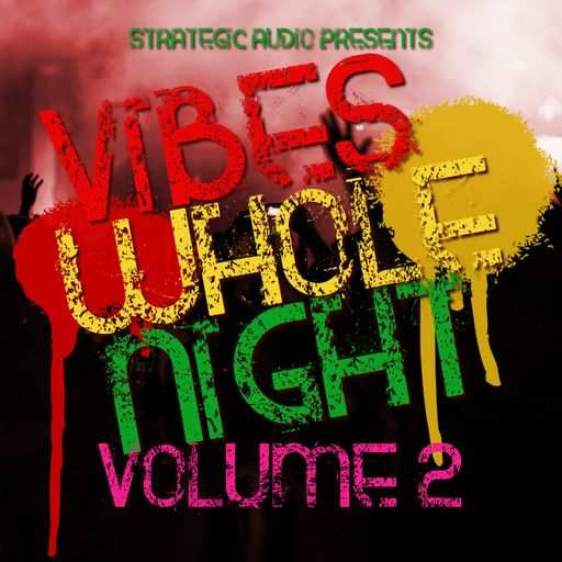 Vibes Whole Night Vol.2 WAV-DISCOVER