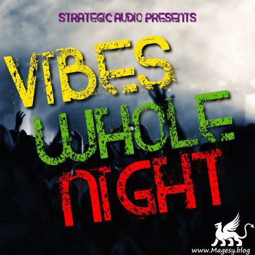 Vibes Whole Night WAV-DISCOVER