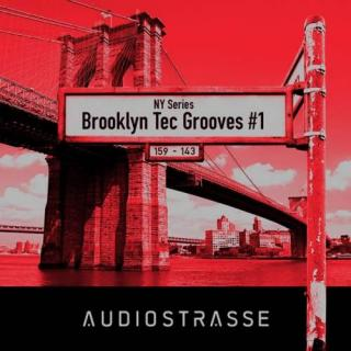 Brooklyn Tec Grooves 1 WAV MAGNETRiXX | Images From Magesy® R Evolution™