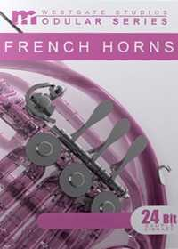 Modular Series French Horns KONTAKT | Images From Magesy® R Evolution™