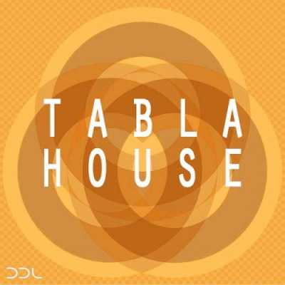 Tabla House WAV FANTASTiC | Images From Magesy® R Evolution™
